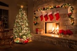 Vánoční svátky jsou na dohled. Přizpůsobte jim dekoraci svého domu či zahrady