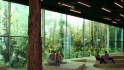 Moderní fólie na okna pozvednou atraktivitu místnosti a zabrání pohledům od zvídavých sousedů